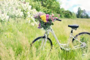 bicycle 788733 1920 300x200 - Wiosny dzień pierwszy